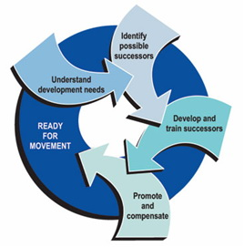 term paper on management development Samples : project management research paper the development of it should be pointed out that traditionally project management software is quite a broad term.
